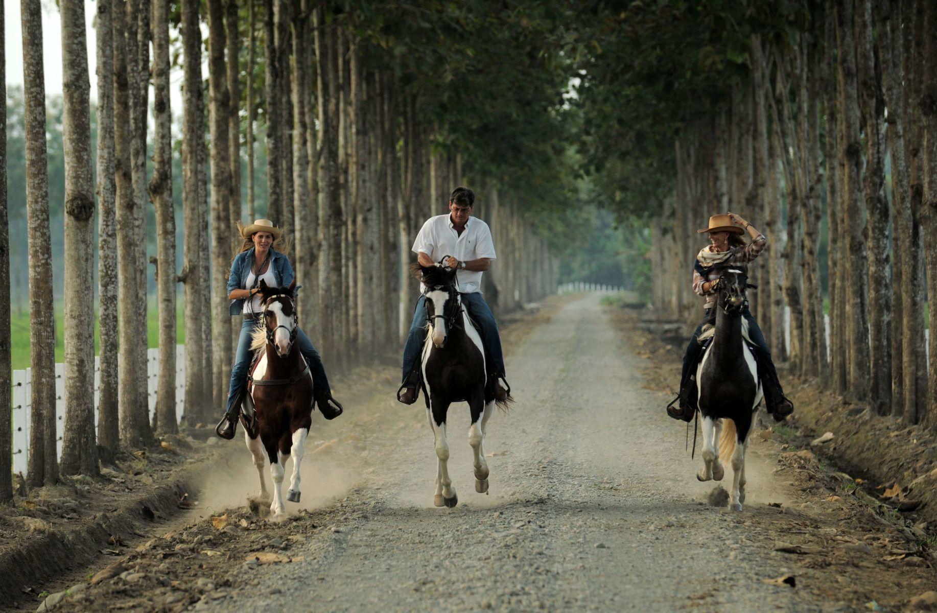 Argentina Signature Tours 2019 - 2020 -  Horseback Riding At Hacienda La Danesa