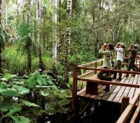 Amazon Lodge & Machu Picchu Highlights Tours 2019 - 2020 -  Inkaterra Activities