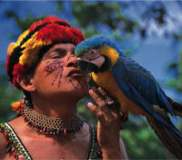 The Amazon: In the Spirit of Roosevelt Tours 2020 - 2021 -  Vllager and Macaw